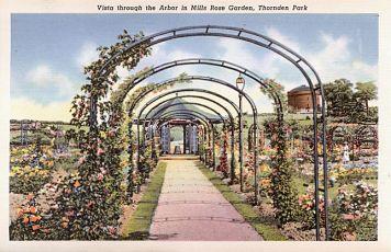 Thorden_Park_Rose_Garden_c1905